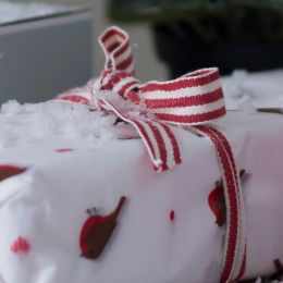 Red & White Stripe Cotton Ribbon