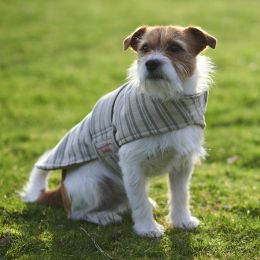 Dog Coat - Charcoal Stripe