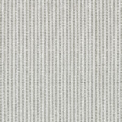 Piping Stripe - Grey Double Width