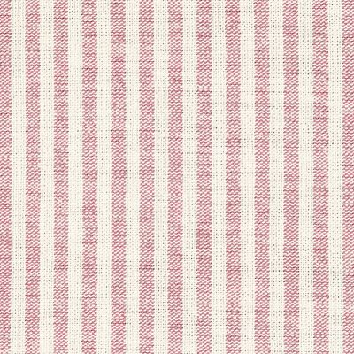 Rose Ivory Stripe Cotton – Double Width – 228