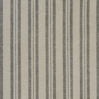Beech Charcoal Medium Ticking Stripe Cotton – 231