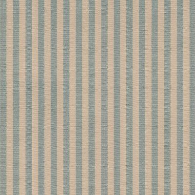 French Blue Natural Stripe Cotton - 250