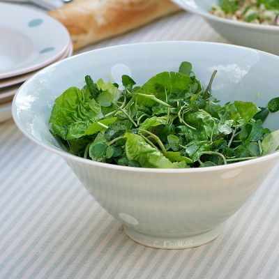 Blue White Spot Small Salad Bowl