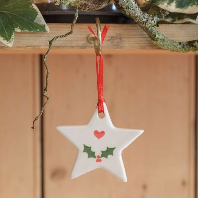 Holly Star Christmas Decoration