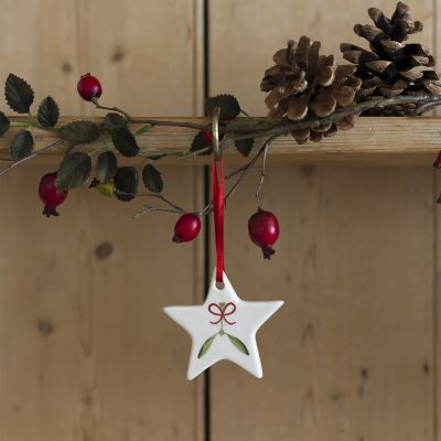 Mistletoe Star Christmas Decoration