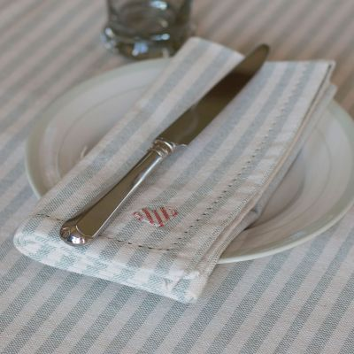 Duck Egg Blue Stripe Napkin