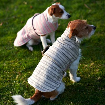 Charcoal Stripe Dog Coat